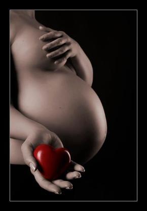 Babybauch Fotoshooting Schwangerschaft  Bilder -  Bremen - Bremen