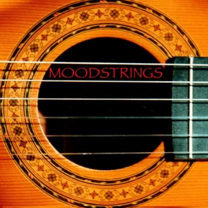 Das Gitarren Duo Moodstrings spielt für Sie!