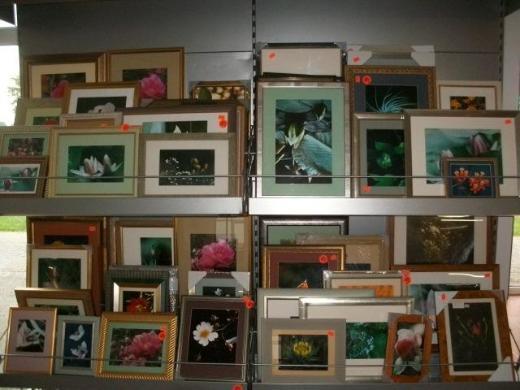 Hochwertige Marken-Bilderrahmen mit Fotografien - Wagenfeld