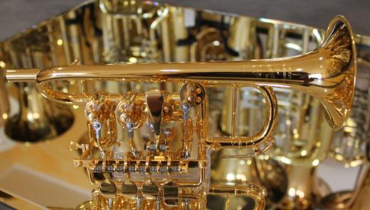 Meister J. Scherzer Piccolotrompete, Mod. 8111-AU, 24 Kt. vergoldet, Neuware / OVP - Bremen Mitte