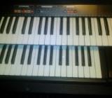 Orgel Technics C300, mobil, MIDI - Nordenham
