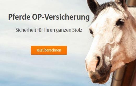 Pferde OP-Versicherung - Bremen