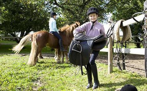 Reitsportartikel - Zubehör für Reiter und Pferde