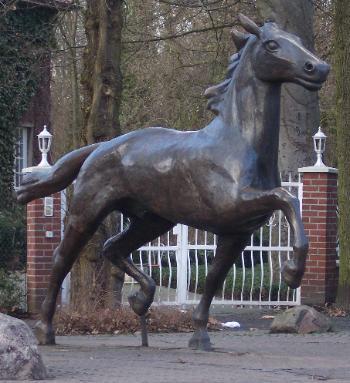 Drensteinfurt Pferd