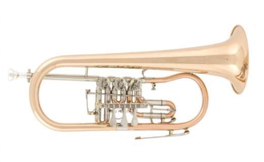 Arnold & Sons B - Konzertflügelhorn Goldmessing, Neuware - Hagenburg