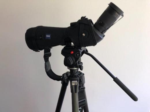 Zeiss Victory Diascope 85 FL, Set mit 20-75x - Okular