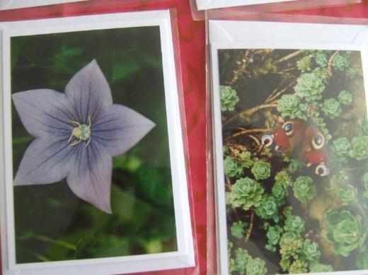 Selbstfotografierte Fotos auf Doppelkarten mit Briefumschlag und in Folie