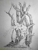 Märchenbaum - Graphit auf Papier 30 x 40 cm Original Ingrid Wolff-Bleekmann
