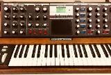 Minimoog Voyager Analog Synthesizer