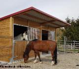 Aussenboxen, Pferdeställe, Pferdeboxen, Weidehütte, Offenstall, Weideunterstand - Kolbingen