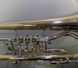Miraphone 24 R Premium Konzert - Flügelhorn aus Goldmessing mit Neusilberkranz - Hagenburg