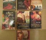7 dicke Romane - Emsdetten