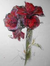 Amaryllis 3.06 V, Ölkreide auf Aquarellpapier 40 x 60 cm Original Ingrid Wolff-Bleekmann