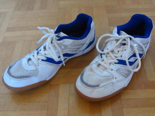 Pro Touch Sportschuhe Indoor, Gr. 39, Modell Rebel Jr., weiß-blau - Münster