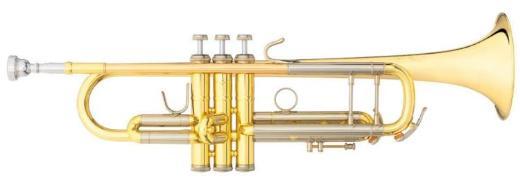 B & S Challenger II Profiklasse - Trompete 3143/2 L Neuware / OVP mit Zubehör