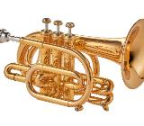 Kühnl & Hoyer Universal Prof. Malte Burba Goldmessing Pocket Trompete, Neuware - Bremen Mitte