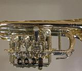 Meister J. Scherzer Piccolo - Trompete, Mod. 8111 - L, Neuware / OVP