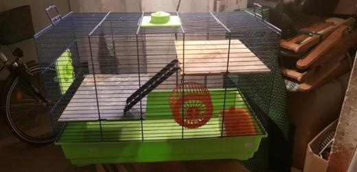 OL , Verkaufe einen Käfig für Nagetiere , Hamster u.s.w - Oldenburg (Oldenburg) Sandkrug