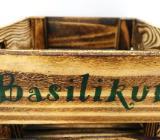 Basilikum,Petersilie,Oregeno,Melisse,Thymian,Kräutertopf,Blumentopf,Küchenkräuter,Kräuter,Pflanzschale - Stuhr