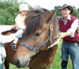 verschenke Pferdemist & PonyKuscheln