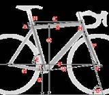 Bike Fitting Positionsvermessung, Körpervemessung für Rennradkauf - Bremen