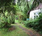 Garteneigenland zu verkaufen - Delmenhorst