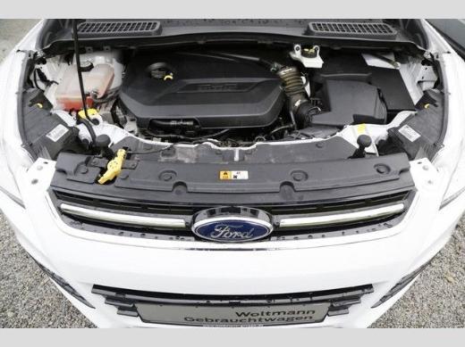 Ford Kuga - Wildeshausen