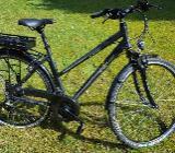 "Prophete E-Bike Trekking Damen ""Navigator 6.4"" - Asendorf"