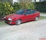 Renault 19  Cabrio - Verden (Aller)