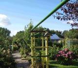 Kleingarten in Bremen-Süd zu verkaufen (Sahnestück) - Bremen