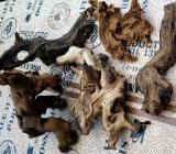 5 Stck. schöne Holzwurzeln für Aquarium - Rastede