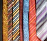 56 gepflegte Krawatten, 3 schöne Fliegen, 6 Krawattenbügel - Ottersberg