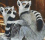 Pixelhobby Vorlage Animals 25,4mm X 20,3mm - Bremen
