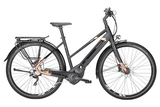 "Pegasus Tecaro Evo 10 Damen E-Bike 28"" 50cm 53cm schwarz 2018 - Friesoythe"
