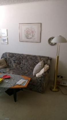 Sofa 3sitzer mit 2 Sessel, Federkern sehr guter Zustand