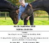 Trainingstag mit Dr. Gerd Heuschmann in Debstedt,am 28.9.18 - Langen (bei Bremerhaven)