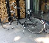 Gazelle Damenrad 28er Primeur - Bremen