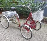 4rad Fahrrad Für Erwachsene - Bremen