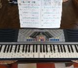 Keyboard, Bontempi PM 651 - Bockhorn (Friesland)