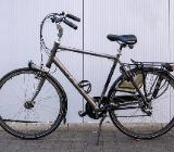 "Koga (Miyata) Alliance NC Herren Trekkingbike 28"" 57cm 8-Gang - Friesoythe"