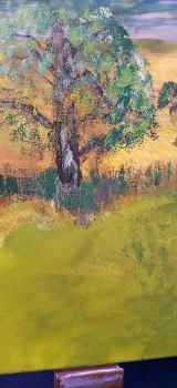 Der schöne Baum - Oldenburg (Oldenburg)