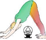 Yoga ist für alle da! - Bremen