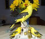 Porzellanvögel von Goebel - Bremen