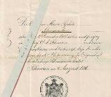 Dokument: Schwerin,  Staatsangehörigkeits – Ausweis vom 04. Aug. 1896 - Brake (Unterweser)