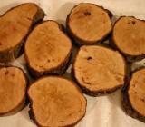 Alte Haselnuss Baumscheiben. Dekorations- Holz, Astabschnitte - Bruchhausen-Vilsen