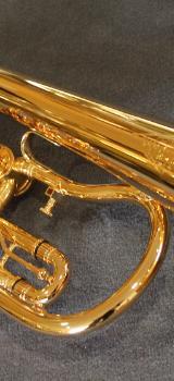 Kühnl & Hoyer 7.11 B - Konzert - Flügelhorn echt vergoldet. Neuware - Bremen Mitte