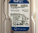 Festplatte Western Digital SATA III 320 GB - Osterholz-Scharmbeck