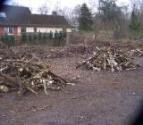 Brennholz kostenlos abzuholen - Zeven