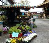 4. Wangerländer Garten- und Freizeitmesse - Wangerland