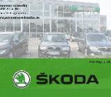 Skoda Fabia - Osterholz-Scharmbeck